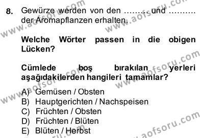 Turizm İçin Almanca 2 Dersi Ara Sınavı Deneme Sınav Soruları 8. Soru