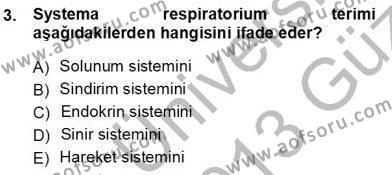 Okulöncesi Öğretmenliği Bölümü 1. Yarıyıl İnsan Anatomisi Ve Fizyolojisi Dersi 2013 Yılı Güz Dönemi Ara Sınavı 3. Soru