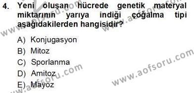 İnsan Anatomisi Ve Fizyolojisi Dersi 2012 - 2013 Yılı (Vize) Ara Sınav Soruları 4. Soru