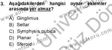 İnsan Anatomisi Ve Fizyolojisi Dersi 2013 - 2014 Yılı (Final) Dönem Sonu Sınav Soruları 3. Soru