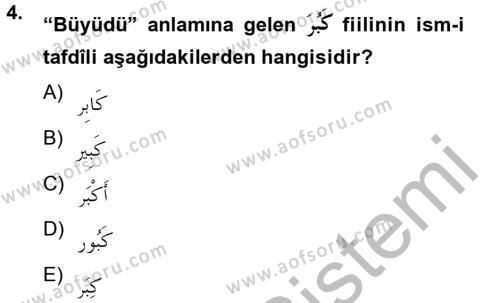 Arapça 2 Dersi Ara Sınavı Deneme Sınav Soruları 4. Soru