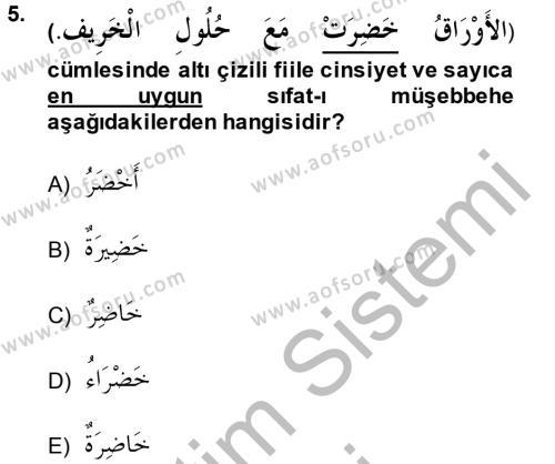 İlahiyat Bölümü 2. Yarıyıl Arapça II Dersi 2014 Yılı Bahar Dönemi Ara Sınavı 5. Soru