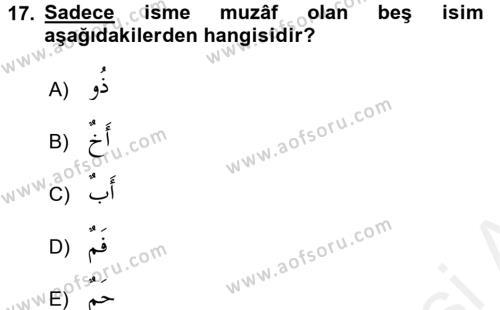 Arapça 2 Dersi Ara Sınavı Deneme Sınav Soruları 17. Soru