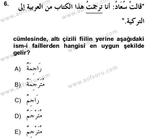 Arapça 2 Dersi Ara Sınavı Deneme Sınav Soruları 6. Soru