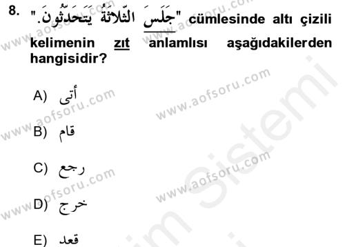 Arapça 2 Dersi Ara Sınavı Deneme Sınav Soruları 8. Soru