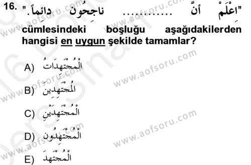 Arapça 2 Dersi Tek Ders Sınavı Deneme Sınav Soruları 16. Soru