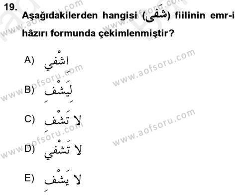 Arapça 2 Dersi Ara Sınavı Deneme Sınav Soruları 19. Soru