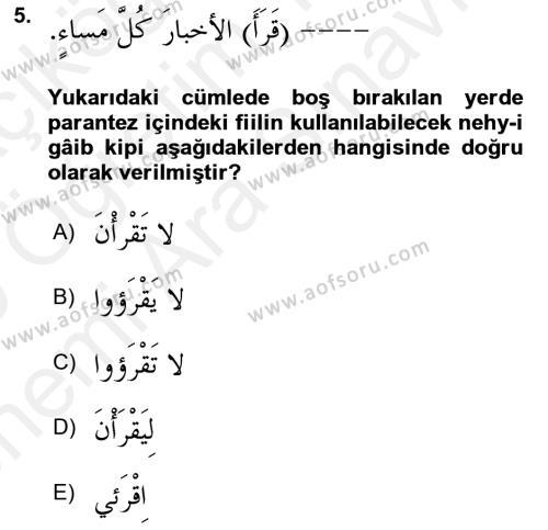 Arapça 2 Dersi Ara Sınavı Deneme Sınav Soruları 5. Soru