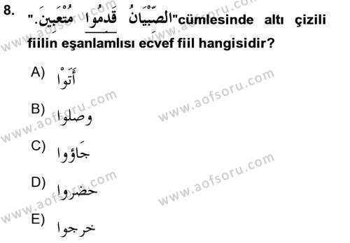 Arapça 3 Dersi Ara Sınavı Deneme Sınav Soruları 8. Soru