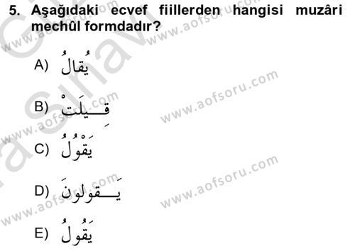 Arapça 3 Dersi Ara Sınavı Deneme Sınav Soruları 5. Soru