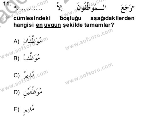 Arapça 4 Dersi Ara Sınavı Deneme Sınav Soruları 11. Soru