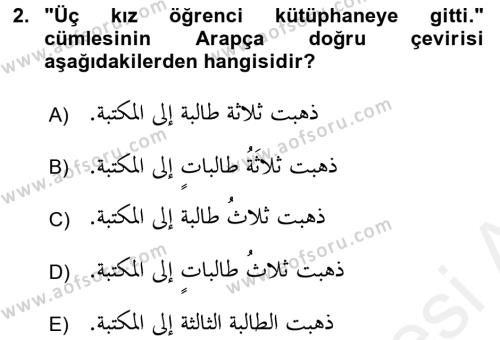 Arapça 4 Dersi 2017 - 2018 Yılı (Vize) Ara Sınav Soruları 2. Soru