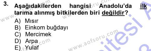 Kültürel Miras ve Turizm Bölümü 1. Yarıyıl Anadolu Arkeolojisi Dersi 2013 Yılı Güz Dönemi Dönem Sonu Sınavı 3. Soru