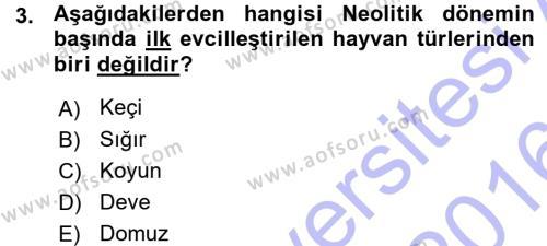 Anadolu Arkeolojisi Dersi 2015 - 2016 Yılı Ara Sınavı 3. Soru