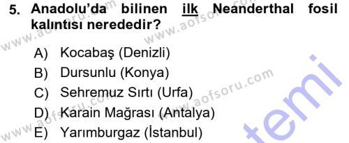 Kültürel Miras ve Turizm Bölümü 1. Yarıyıl Anadolu Arkeolojisi Dersi 2016 Yılı Güz Dönemi Dönem Sonu Sınavı 5. Soru