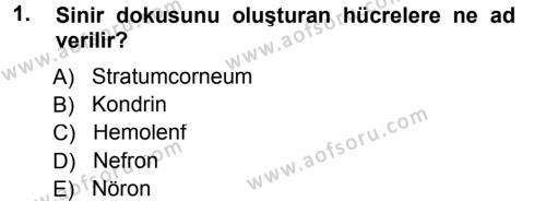 Tarım Bölümü 2. Yarıyıl Genel Biyoloji II Dersi 2013 Yılı Bahar Dönemi Ara Sınavı 1. Soru