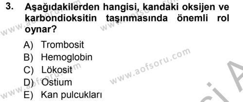 Tarım Bölümü 2. Yarıyıl Genel Biyoloji II Dersi 2013 Yılı Bahar Dönemi Ara Sınavı 3. Soru