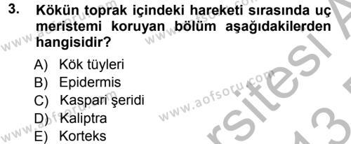 Tarım Bölümü 2. Yarıyıl Genel Biyoloji II Dersi 2013 Yılı Bahar Dönemi Dönem Sonu Sınavı 3. Soru