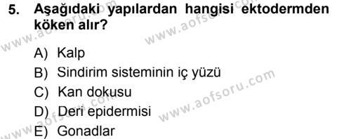 Tarım Bölümü 2. Yarıyıl Genel Biyoloji II Dersi 2013 Yılı Bahar Dönemi Dönem Sonu Sınavı 5. Soru