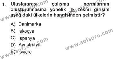 Sosyal Bilimler Bölümü 1. Yarıyıl Sosyal Politika Dersi 2013 Yılı Güz Dönemi Tek Ders Sınavı 1. Soru