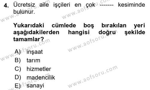 Çalışma İlişkileri Tarihi Dersi 2017 - 2018 Yılı (Vize) Ara Sınav Soruları 4. Soru