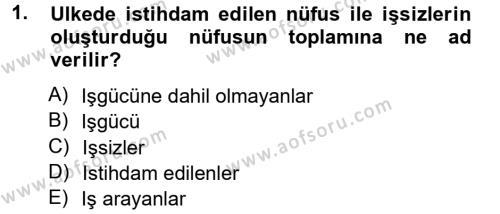 İstihdam ve İşsizlik Dersi 2012 - 2013 Yılı Ara Sınavı 1. Soru