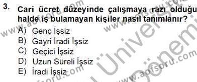 İstihdam ve İşsizlik Dersi 2012 - 2013 Yılı Dönem Sonu Sınavı 3. Soru