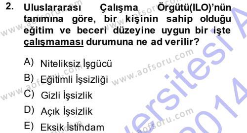 İstihdam ve İşsizlik Dersi 2013 - 2014 Yılı Ara Sınavı 2. Soru