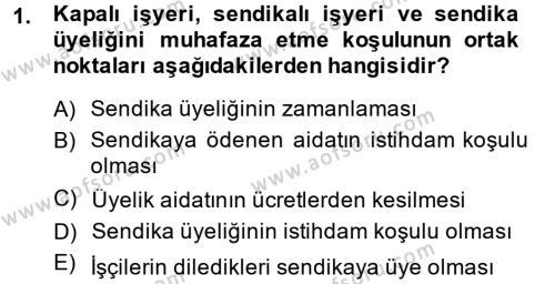 İnsan Kaynakları Yönetimi Bölümü 2. Yarıyıl Sendikacılık Dersi 2014 Yılı Bahar Dönemi Dönem Sonu Sınavı 1. Soru