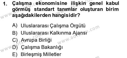Çalışma Ekonomisi Dersi 2013 - 2014 Yılı (Vize) Ara Sınav Soruları 1. Soru