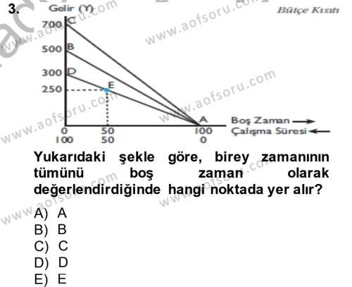 Kamu Yönetimi Bölümü 6. Yarıyıl Çalışma Ekonomisi Dersi 2014 Yılı Bahar Dönemi Dönem Sonu Sınavı 3. Soru