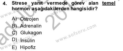 Sosyal Hizmetler Bölümü 4. Yarıyıl Çatışma ve Stres Yönetimi II Dersi 2014 Yılı Bahar Dönemi Ara Sınavı 4. Soru