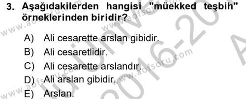 Eski Türk Edebiyatına Giriş: Söz Sanatları Dersi 2016 - 2017 Yılı (Vize) Ara Sınav Soruları 3. Soru