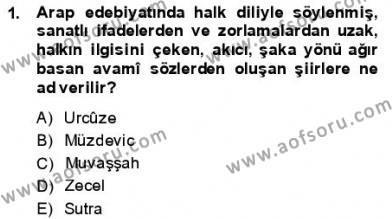 VIII-XIII. Yüzyıllar Türk Edebiyatı Dersi 2013 - 2014 Yılı (Final) Dönem Sonu Sınav Soruları 1. Soru