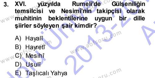 XVI. Yüzyıl Türk Edebiyatı Dersi 2013 - 2014 Yılı Ara Sınavı 3. Soru