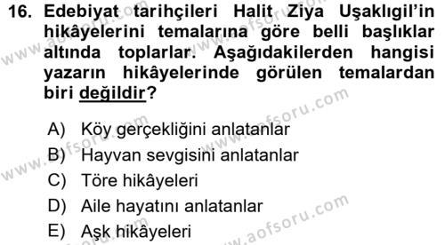 II. Abdülhamit Dönemi Türk Edebiyatı Dersi Ara Sınavı Deneme Sınav Soruları 16. Soru