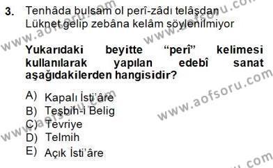 XIX. Yüzyıl Türk Edebiyatı Dersi 2014 - 2015 Yılı (Final) Dönem Sonu Sınav Soruları 3. Soru