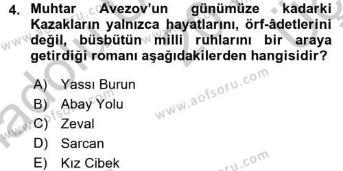 Çağdaş Türk Edebiyatları 2 Dersi 2016 - 2017 Yılı 3 Ders Sınav Soruları 4. Soru
