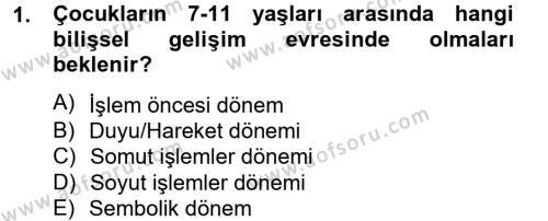 Çocuk ve Ergen Bakımı Dersi 2012 - 2013 Yılı (Vize) Ara Sınav Soruları 1. Soru