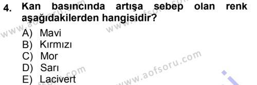 Ev İdaresi Bölümü 3. Yarıyıl Giysi Seçimi Dersi 2013 Yılı Güz Dönemi Dönem Sonu Sınavı 4. Soru