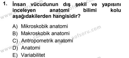 Ev İdaresi Bölümü 3. Yarıyıl Giysi Seçimi Dersi 2014 Yılı Güz Dönemi Tek Ders Sınavı 1. Soru