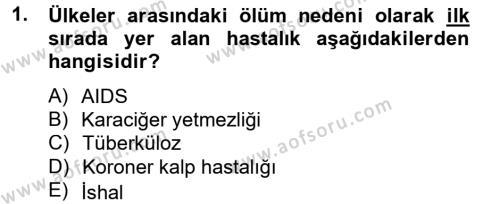 Ev İdaresi Bölümü 4. Yarıyıl Sağlıklı Yaşam Dersi 2013 Yılı Bahar Dönemi Ara Sınavı 1. Soru