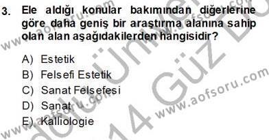 Estetik ve Sanat Felsefesi Dersi 2013 - 2014 Yılı Ara Sınavı 3. Soru