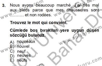 Uluslararası İlişkiler Bölümü 6. Yarıyıl Fransızca II Dersi 2013 Yılı Bahar Dönemi Dönem Sonu Sınavı 3. Soru