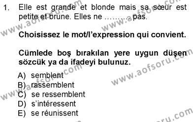 Felsefe Bölümü 7. Yarıyıl Fransızca III Dersi 2013 Yılı Güz Dönemi Dönem Sonu Sınavı 1. Soru