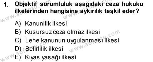 Ceza Hukukuna Giriş Dersi 2013 - 2014 Yılı (Final) Dönem Sonu Sınav Soruları 1. Soru