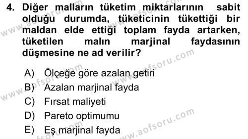 İktisada Giriş Dersi 2018 - 2019 Yılı (Final) Dönem Sonu Sınav Soruları 4. Soru