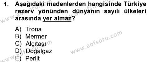 Türkiye Ekonomisi Dersi 2012 - 2013 Yılı Ara Sınavı 1. Soru