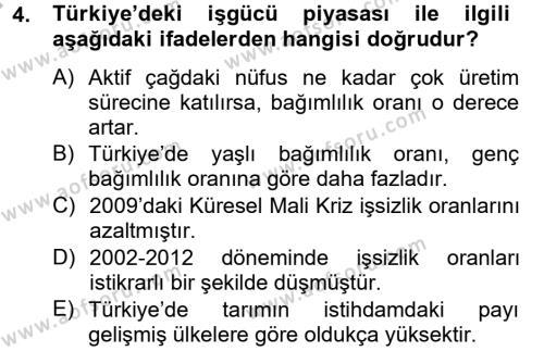 Türkiye Ekonomisi Dersi 2012 - 2013 Yılı Ara Sınavı 4. Soru