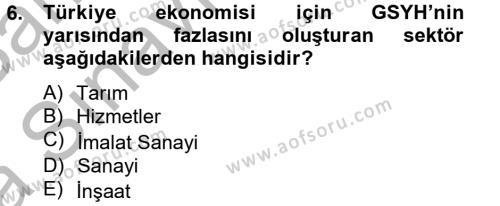 Türkiye Ekonomisi Dersi Ara Sınavı Deneme Sınav Soruları 6. Soru